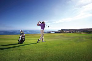 Investing In Golf Course Netting