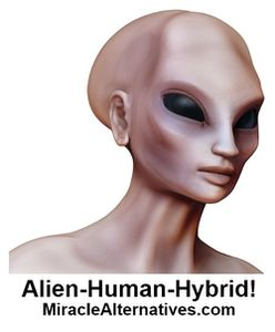 Alien-Human Hybrids Stroll Among United States! 10 Identification