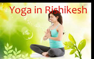 Best Yoga School in India