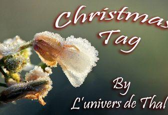Christmas Tag : J'ai été taguée !