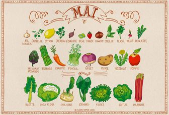 Calendrier des fruits et légumes - Mai
