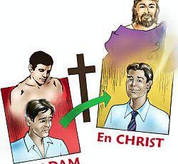 12° dimanche du Temps ordinaire A (Romains 5, 12-15) (DiMail 335)