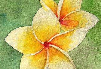 les cartes postales fleurs tropicales disponibles!