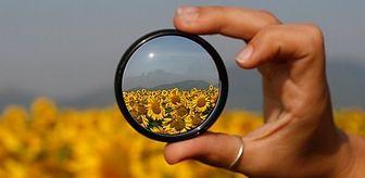 Inf'OGM et sa conception du « débat transparent » sur les NBT