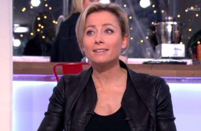2014 01 14 - ANNE-SOPHIE LAPIX - FRANCE 5 - C A VOUS