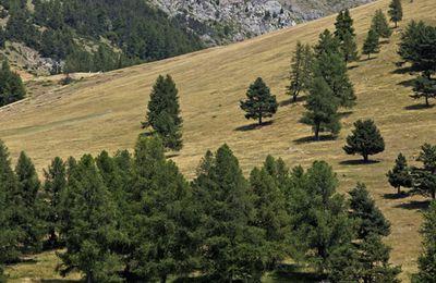 La Croix Saint-Philippe :  Hautes-Alpes