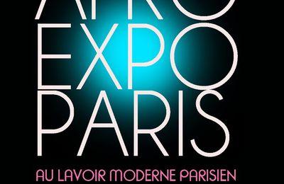 Afro Expo Paris, l'événement multiculturel par Mike Sylla