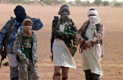 Boko Haram revendique la prise des otages français au Cameroun