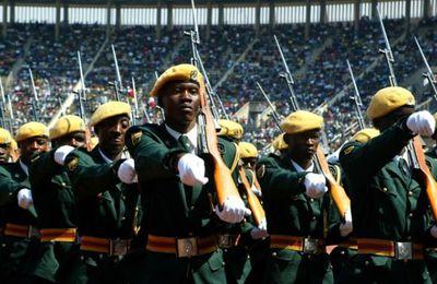 {News} L'ingérence des forces de sécurité présente un risque pour les élections au Zimbabwe