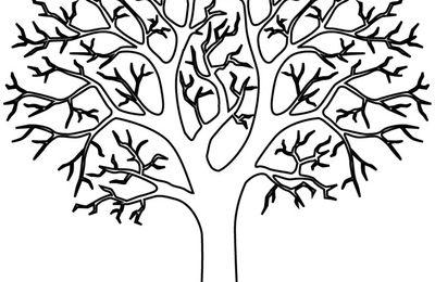 Des arbres en peintures