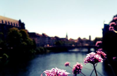 Travelling to Strasbourg - August 2012 (Part 1)