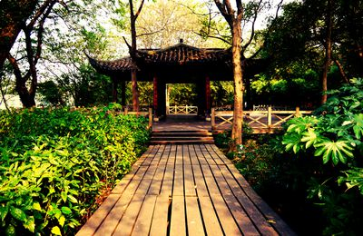Travelling to Hangzhou - November 2012 (Part 2)