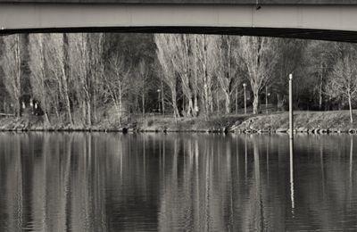 Images des Bords de Seine...
