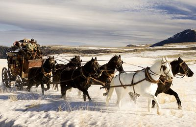 Colorado, viaggio nel West di The Hateful Eight