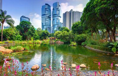 Naturalmente…Hong Kong