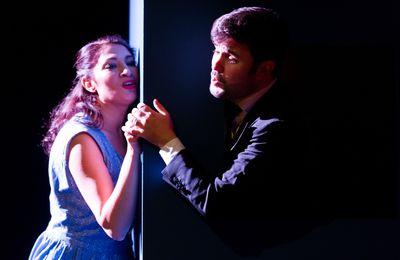 Opéra-Théâtre de Metz Métropole Raoul, Barbe-Bleue  le 25 mars 2017
