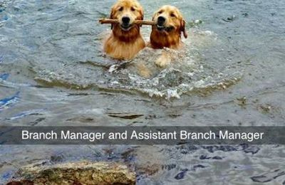 Branch Manager and Assistant Branch Manager