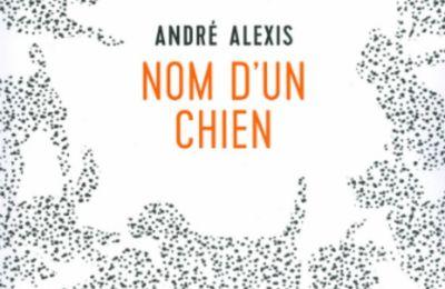 Nom d'un chien de André Alexis
