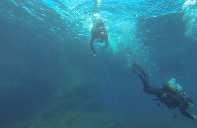 Plongée à Campomoro
