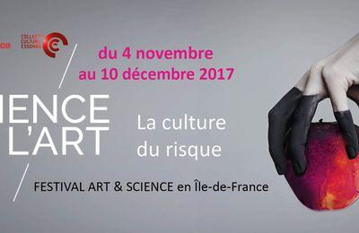 La Science de l'Art : La Culture du risqu