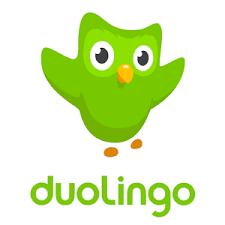 Le néerlandais avec Duolingo testé pour vous