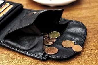 Il portafoglio