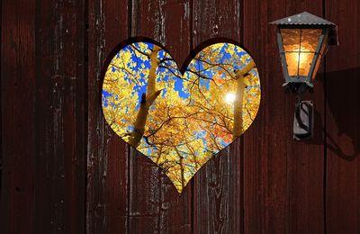 Amour, citation de Rabindranath Tagore