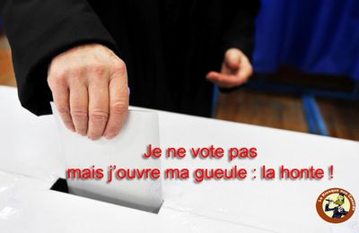 Je ne vote pas mais j'ouvre ma gueule : la honte !