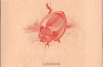 "Edgar Poe ""The Gold bug"" (Georges Routledge & sons - 1894)"
