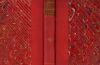 "J.-H. Rosny ""Le Testament volé"" (A. Fontemoing - 1906)"