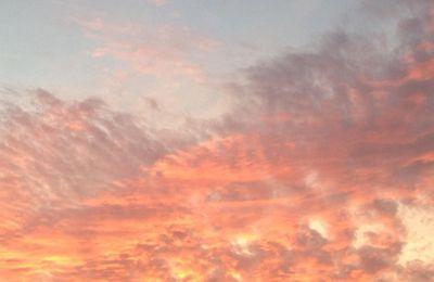 La fée Toupie et le ciel rose