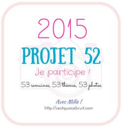 PROJET 52-2015 - SEMAINE 52