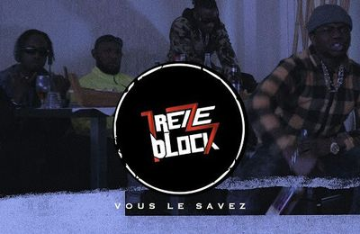 13 Block   Vous Le Savez   (Single)  (H5N1)