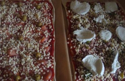 Pizza saumon et pizza au thon