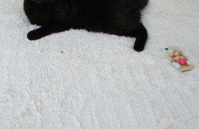 Concours : Dormir dans un nuage de coton c'est maintenant possible grace a Bultex