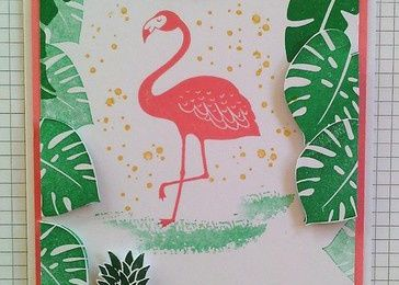 "Une carte ""flamant rose"""