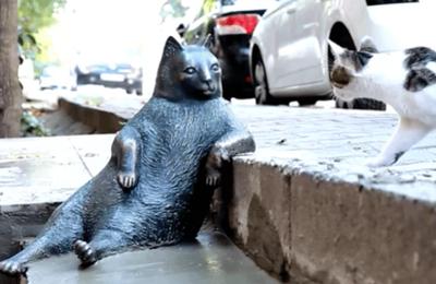 Turquie : La statue de Tombili, chat des rues d'Istanbul
