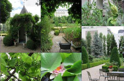 Un jardin bien caché