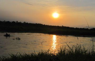 Sauraha: Jungle sunset