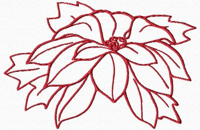 poinsettia PS