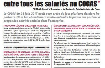 InFOsocial – FO défend ardemment l'équité entre tous les salariés au COGAS