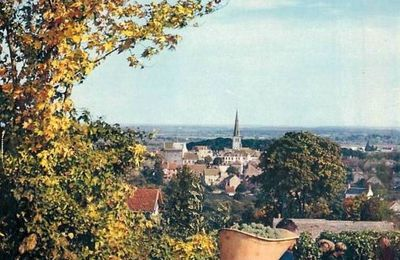 Meursault - Côte d'Or - Dépt 21.