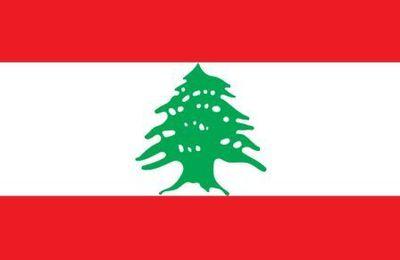 Liban: double attentat meurtrier dans le fief du Hezbollah à Beyrouth
