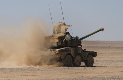Barkhane : Focus sur les moyens terrestres déployés dans l'opération Vignemale