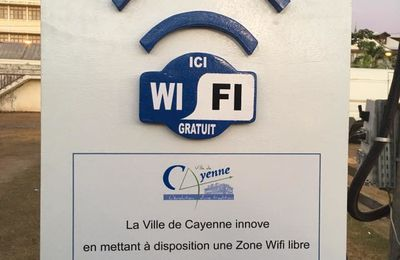 Guyane : Inauguration d'un accès Wi-Fi gratuit aux Palmistes !