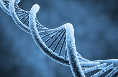Transmuter son ADN