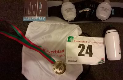 #75. Le 15km du Klaverbladloop de Zoetermeer: 15 km/h ou un week-end inoubliable.
