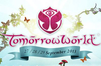 TomorrowWorld 2013 : David Guetta