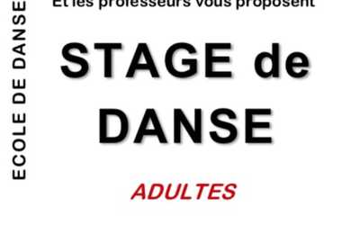 Zin Art - Stage de danse pour adultes