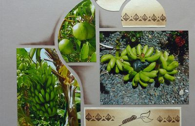 Fruits de la Guadeloupe